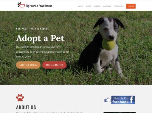 Big Hearts 4 Paws Rescue